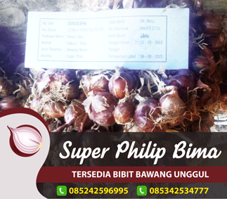 Sidebar super philip bima